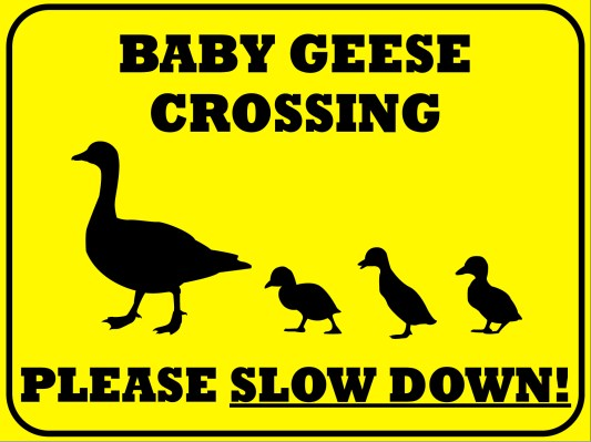 baby-geese-sign