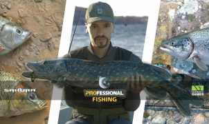 Professional Fishing Free Title
