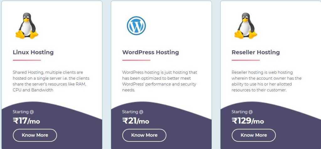 Ezerhost.com Web Hosting Review: Comprehensive And Dynamic Web Hosting Company.