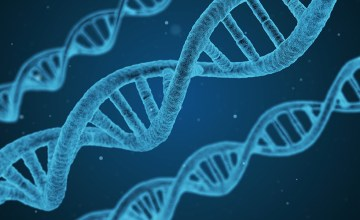 DNA strands for modern science facts