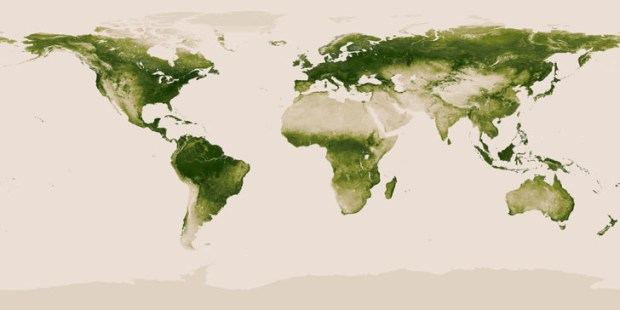 World vegetaion map by NASA and NOAA