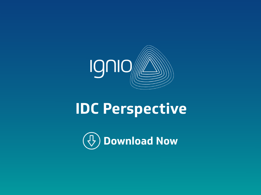 Analytic Report-IDC-Perspective