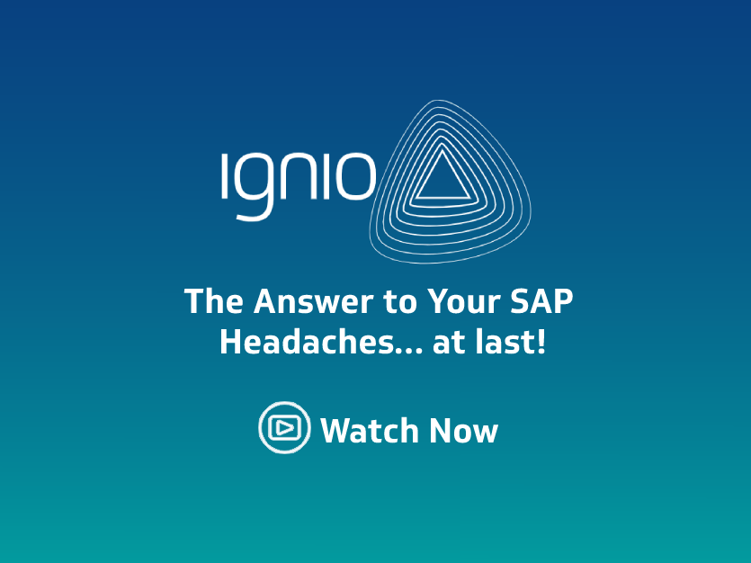 Webinar-The-Answer-to-Your-SAP-Headaches
