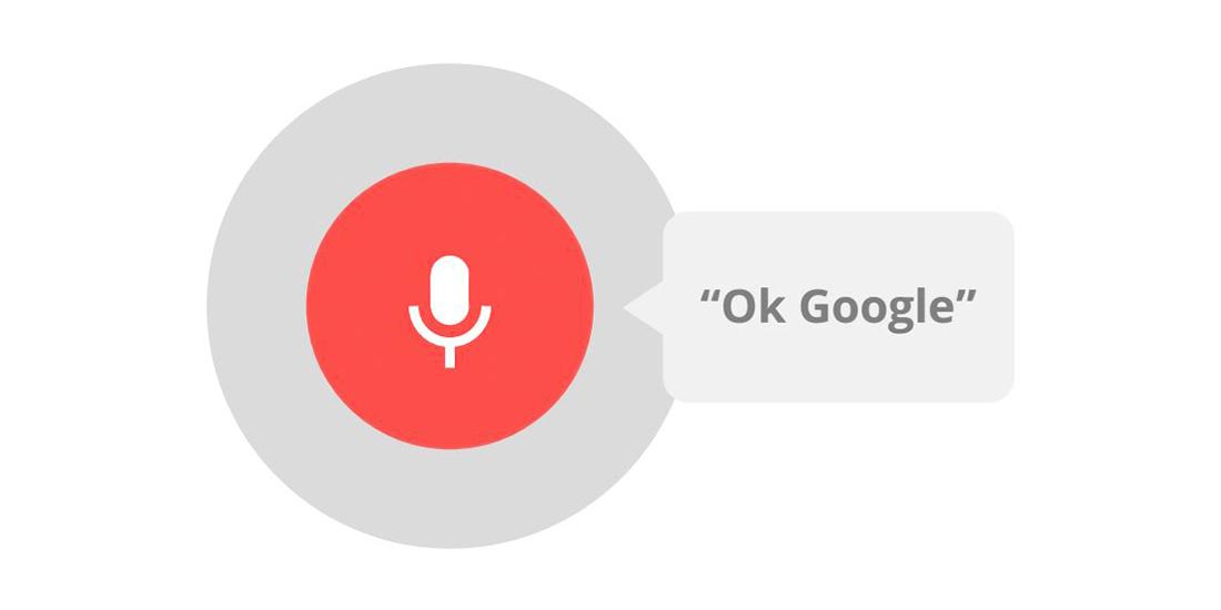 Ok google фото чихуахуа