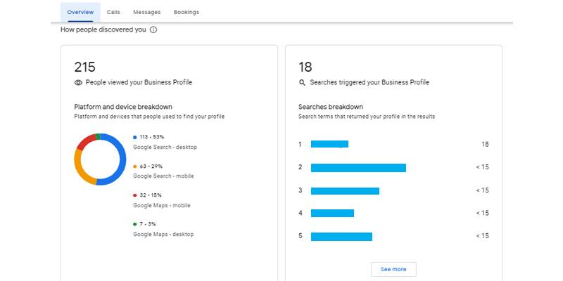 Google My Business Analytics Performance