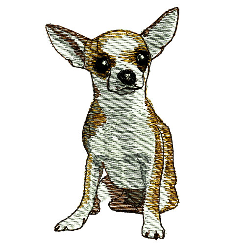 Chihuahua Dog Puppy Embroidery Design