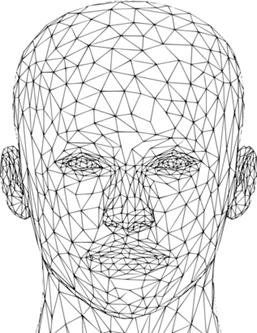 Face Analyzer (Digitalization of Rhinoplasty Research)