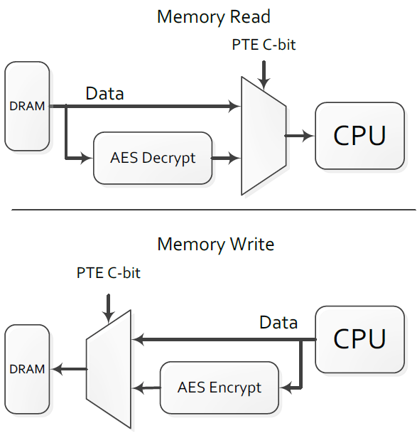 Memory Encryption Behavior