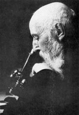 a black and white photograph of Hansen as an older white man with a beard looking in a microscope