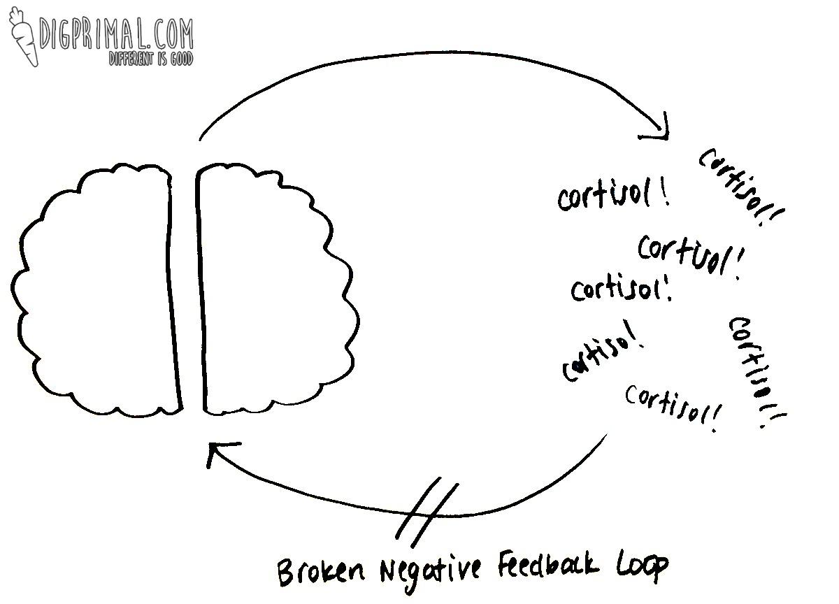 Adrenal Fatigue Part 1 D I G