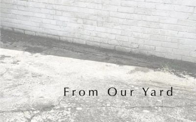 'From Our Yard' Online Open Studios Publication