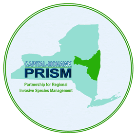 (PRISM) logo, new york state map, waterfalls home page
