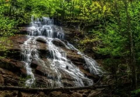 waterfall, trees,