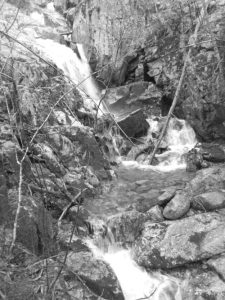 Blueberry Falls