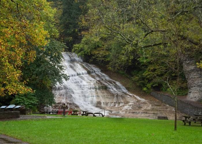 waterfall, trees, grass