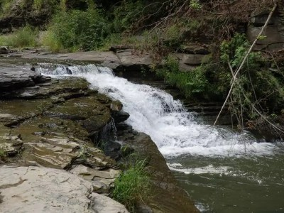 Canaserga Lower Falls, Livingston County, New York