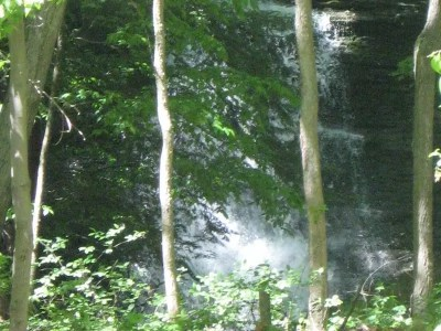 Fall Creek, Tributary Falls (Falls in woods), Tompkins County, New York
