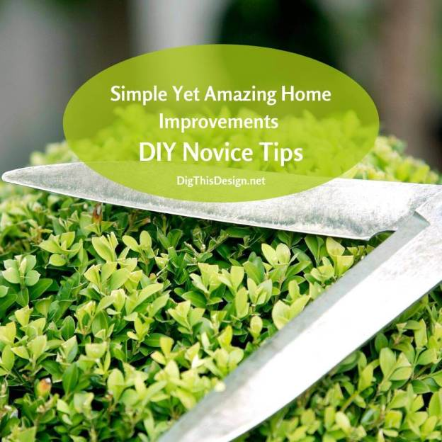 Easy Tips For The Diy Novice For Home Improvements Dig