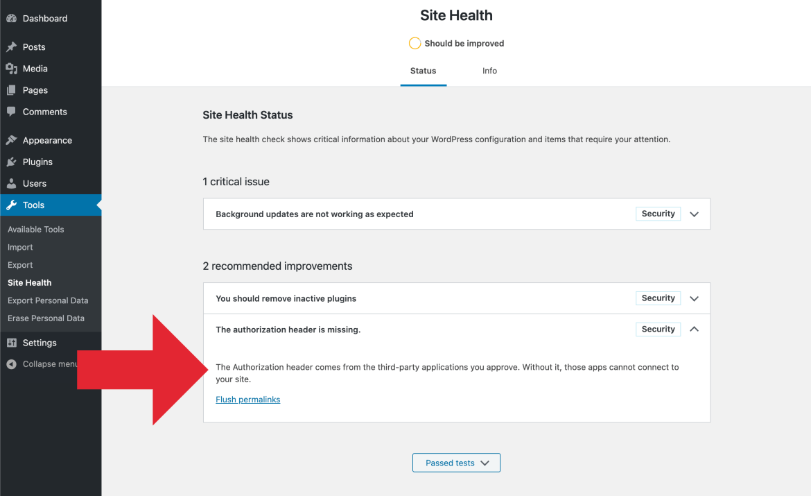 Site Health Results: Authorization Header Missing (Details)