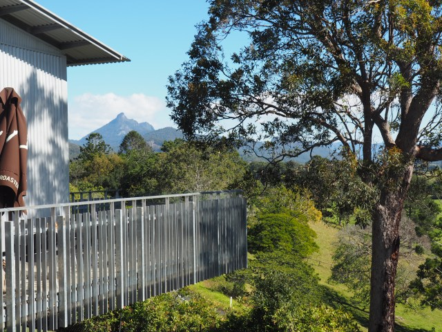 Mt Warning from the Tweed Regional Gallery
