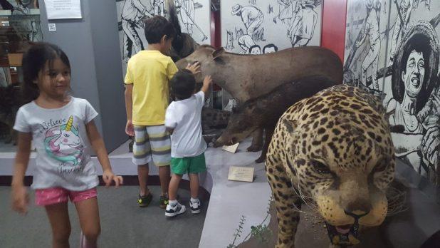 Liberdade com crianças: Museu bunkyo