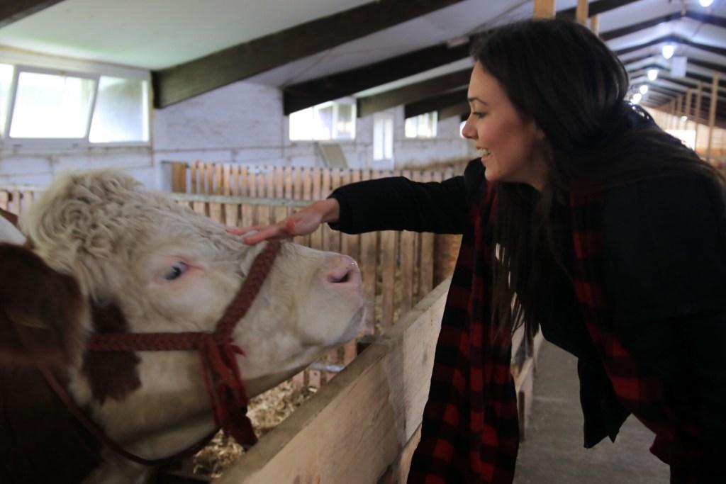 Najlepša farma u Srbiji