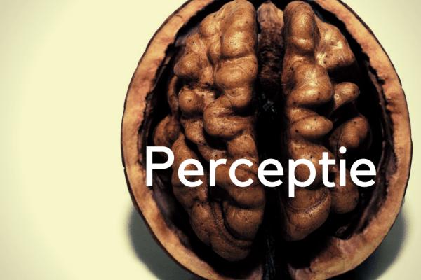 Perceptie