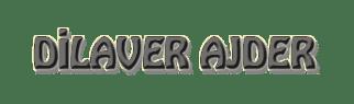 Pratik Bilgiler ve İbretlik Hikayeler, Dilaver AJDER