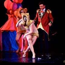 Sogno di una notte al circo