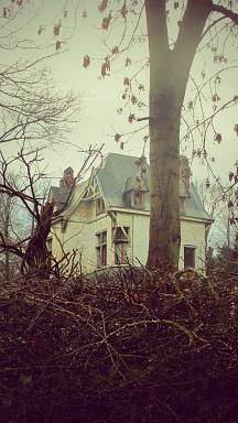 Of derelict houses and brambles.