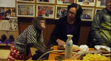 A restaurante in tokiyo where monkey play role of waiter