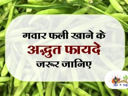 benefits of guar