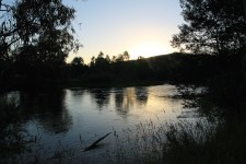 Brookes Cutting Reserve - Goulburn River (Vic)