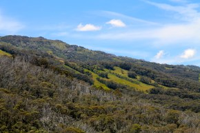 View From Chairlift To Kosciuszko Walk (NSW)