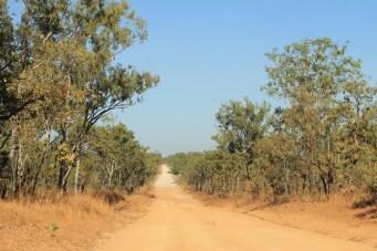 Litchfield NP - Litchfield Park Road (NT)