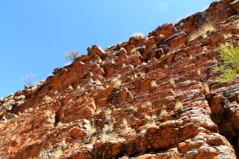 Rock Face On Way To Ormiston Gorge (NT)