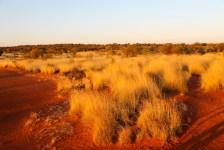 Ewaninga Reserve (NT)