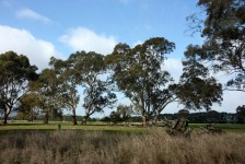 Southern Grampians - Farmland (Vic)