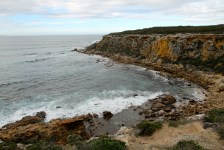 Whalers Way - Pelamis Point (SA)