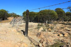 Wubin To Canna - Exploring Wildflower Country - Rabbit Proof Fence (WA)