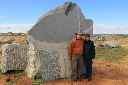 Boogardie Station - Orbicular Granite (WA)
