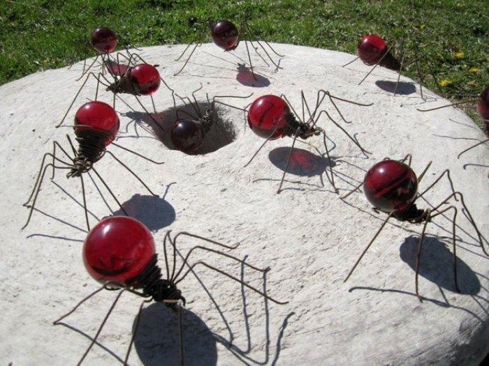 laba-laba merah