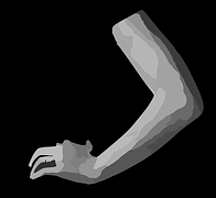 arm-312020__180