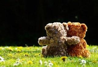 teddy-1361396__180