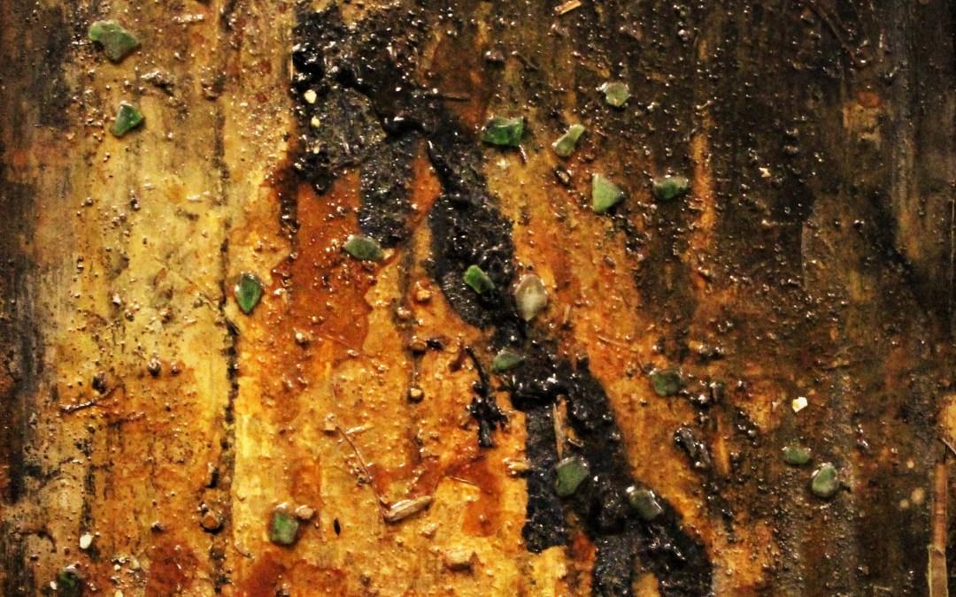 Brandon Hamilton:                                                                  Texture and Light: Painterly Art Of The Universe