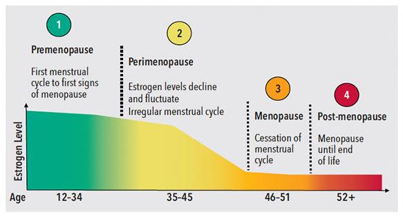 menopause-fig-1