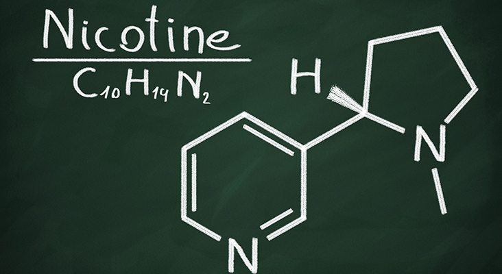 nicotine structural model