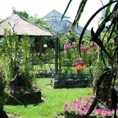 Bali Orchid Garden Travel Guidebook Must Visit Attractions