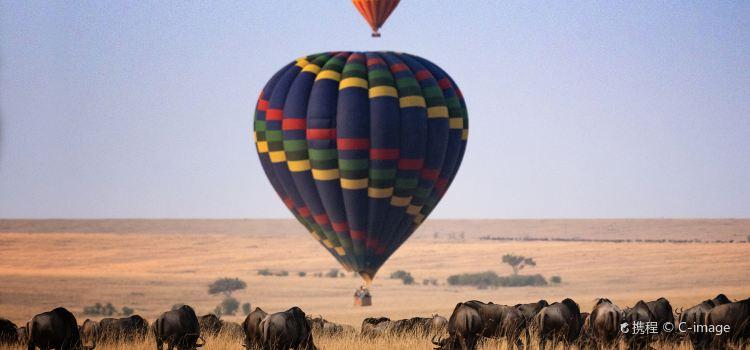 馬賽馬拉國家公園熱氣球之旅旅遊攻略指南-馬賽馬拉國家公園熱氣球之旅評價-馬賽馬拉國家公園熱氣球之旅 ...