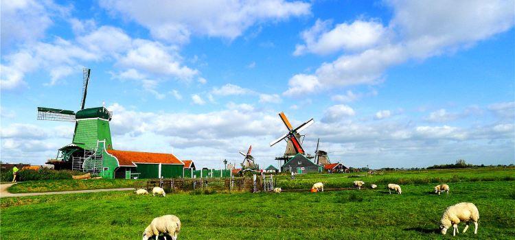 2020荷蘭旅遊攻略-荷蘭景點地圖-歐洲自由行旅遊指南-Trip.com